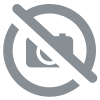 Croquette pour chien senior Dog Chow Mature Adult riche en poulet